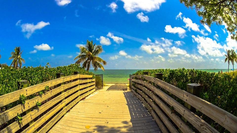 Miami Free